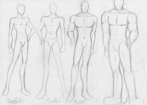 how to determine body type male
