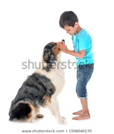 Stock Photo Child And Dog In Font Of White Background Pet Dogs Dogs And Kids Dogs