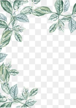 Leaf Material In 2020 Watercolor Leaves Flower Frame Floral Border