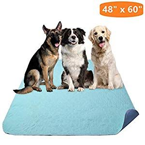 Kooltail Washable Pee Pads For Dogs Waterproof Dog Mat Non Slip 48 X 60 Reusable Puppy Tr Puppy Pads Training Dog Pee Pads Dog Mat