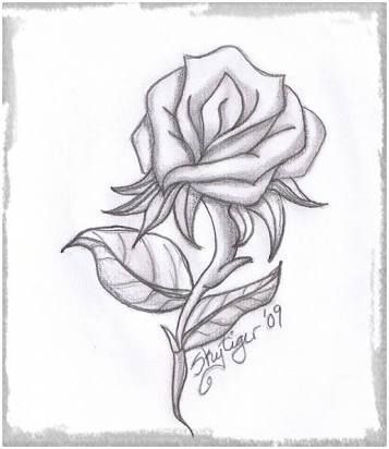 Resultado De Imagen Para Dibujos De Amor A Lapiz Faciles De Copiar Roses Drawing Rose Sketch Rose Drawing