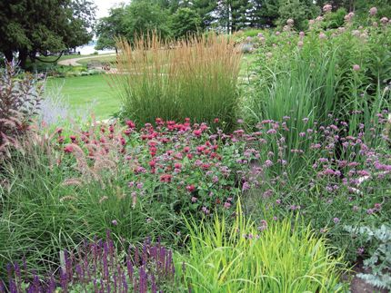 ornamental grasses for cold climates introduction yard and garden university of minnesota extension landscape pinterest minnesota grasses and - Flower Garden Ideas Minnesota