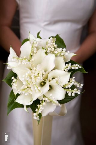 Calla Lilies Lily Of The Valley Wedding Bouquet I Would Take Out Leaves Pinteres
