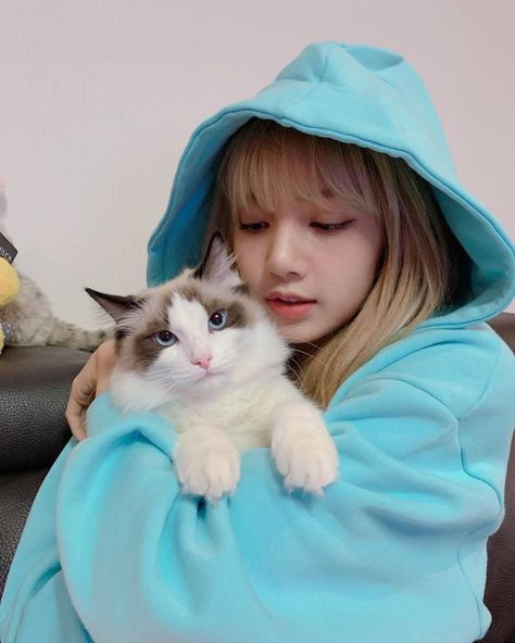 Click for full resolution. BLACKPINK Lisa with her cat
