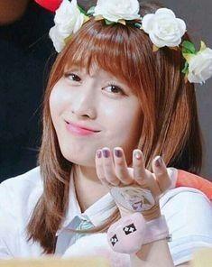 momo #twice   kpop idol meme/funny in 2019   Memes, Meme faces, Cute