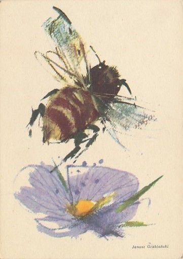 Grabiański Pszczoła Bąk Leci Z Ula Wiersz Konopnic