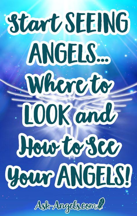 Start Seeing Angels... Where to Look and How to See Your Angels! Do you want to learn how to see your angels? With a little bit of technique, the right intention, and with persistence you can start seeing angels now! #seeingangels #askangels