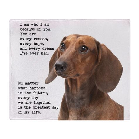 Dachshund Throw Blanket By Phodographer Dachshund Quotes Funny
