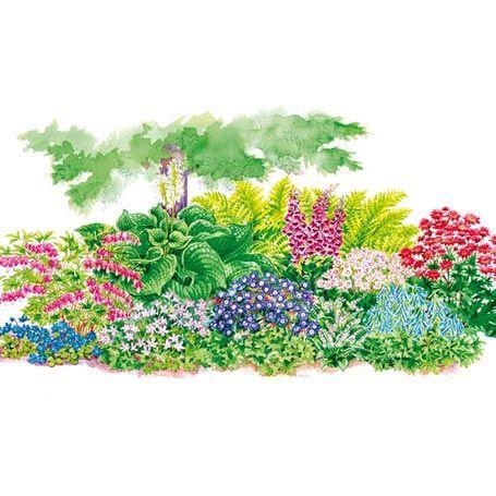 Sortiment Blütenpracht im Schatten, 20 Stück von Gärtner - gemusegarten anlegen pflanzplan