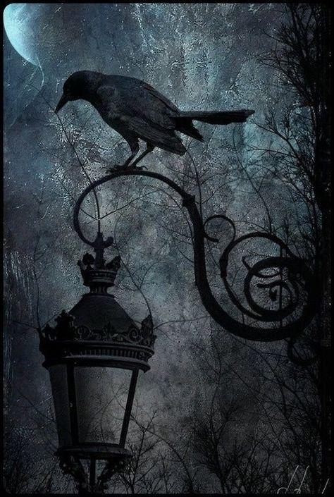 Photography dark fantasy gothic art 44+ new ideas