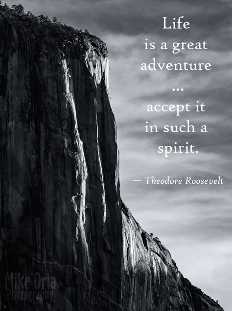 Top quotes by Theodore Roosevelt-https://s-media-cache-ak0.pinimg.com/474x/e5/19/8c/e5198caae3c7251c865d93204708d4ee.jpg