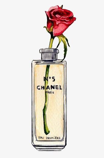 رسمت باليد عطور شانيل Chanel Perfume Perfume Perfume Bottles