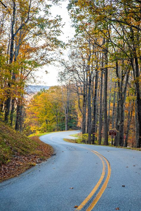 Planning to visit Virginia? Don't miss Roanoke in the Blue Ridge Mountains. Check out this of 22 things to do in Roanoke including top attractions, driving the Blue Ridge Parkway, places to eat, holiday events and much more! Let these Roanoke travel tips help you plan your next Virginia vacation. #Roanoke #BlueRidgeParkway #Virginia #travel #roadtrip #roadtrips #familytravel