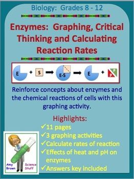 Enzymes Graphing Activities | Graphing activities, Critical ...