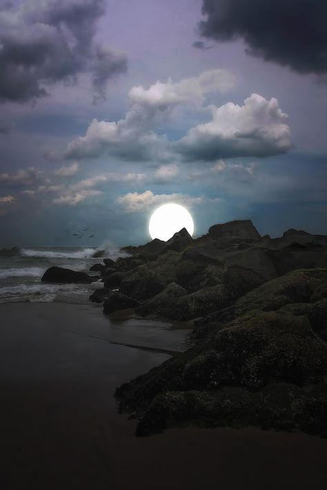 Moonlight Tonight