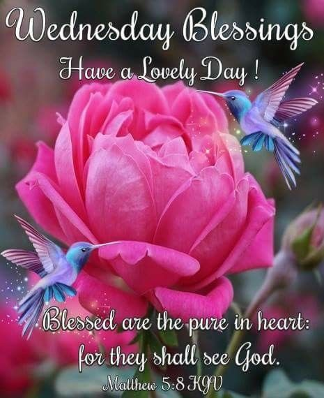 """WEDNESDAY BLESSINGS"""" Matthew 5:8 (1611 KJV !!!!) """" Blessed are the pure in  heart: for they shall see God."""" HAVE A LO… 
