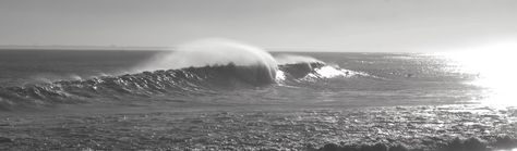 Rockaway Beach Monster