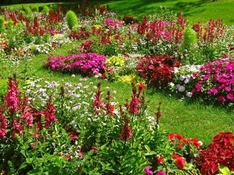 Flower bed designs on pinterest cottage gardens flower for Perennial flower bed design