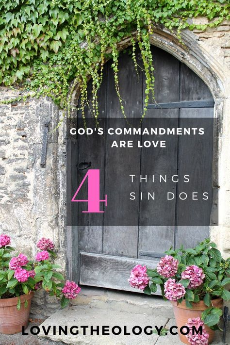 In this series we have been answering what love is. We first defined love and last week we saw that God's faithfulness is love. This week let's look into how God's commandments are love. First we see how His love saves us through His commandments. He asks us to sin no more and we discuss the effects of sin. We also see how His love brings discipline for us through His commandments and what a great benefit that is for us! #godscommandments #love #godslove #discipline #sin #christianlife