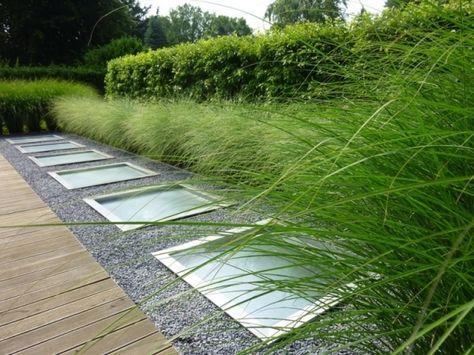 Moderner Garten Mit Grasern Moderne Gartengestaltung Mit