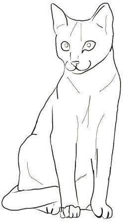 Ausmalbilder Katzen Fur Kinder Ausmalbilder Katzen Katze Zum
