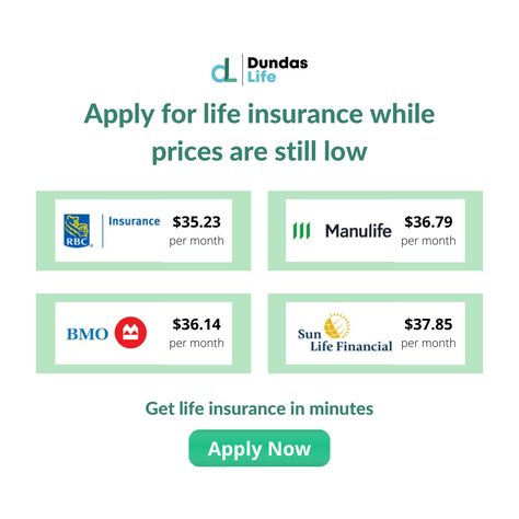 Compare insurance quotes today