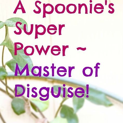 spoonies We are the master of disguises...