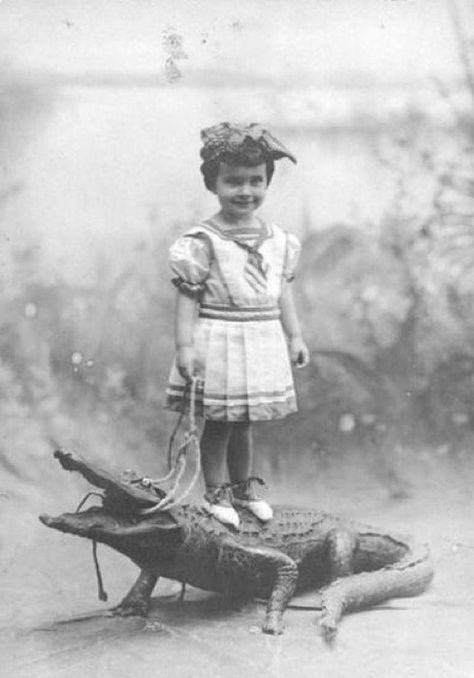 Just walking my alligator...