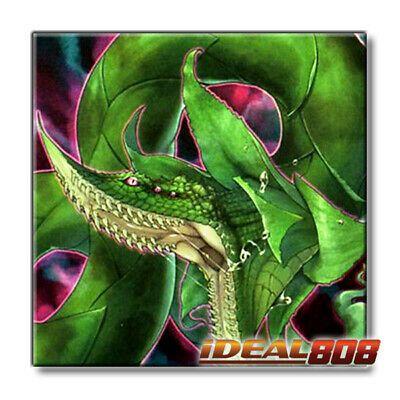 Predaplant Verte Anaconda DUOV-EN021 Ultra Rare 1st Edition YuGiOh