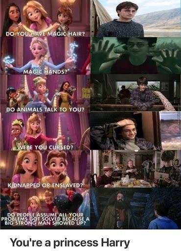 Was I Cursed Princess Harry Harry Potter Funny Harry Potter Memes Hilarious