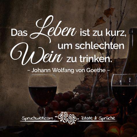 Das Leben ist zu kurz um schlechten Wein zu trinken Vintage Blechschild