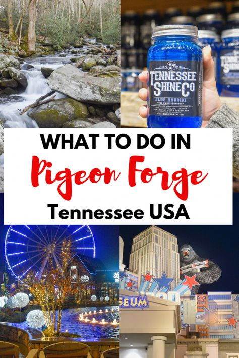 Pigeon forge Gatlinburg Tennessee - Things to do in pigeon forge and gatlinburg Tennessee for the ultimate tennessee vacation. Guide includes Things to do in pigeon forge & gatlinburg Tennessee for ki Pigeon Forge Restaurants, Pigeon Forge Hotels, Pigeon Forge Attractions, Pigeon Forge Tennessee, Gatlinburg Vacation, Tennessee Vacation, Tennessee Usa, Gatlinburg Tn, Gatlinburg Tennessee Restaurants