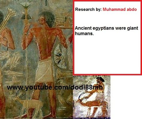 a comparison of ancient egyptian and