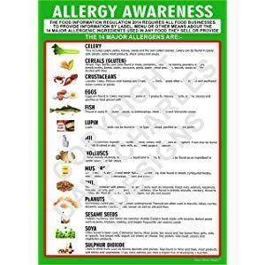 HEALTHY EATING FOOD PYRAMID PosterA4 A3 /& A3 Sizes LaminatedHD Print DIET
