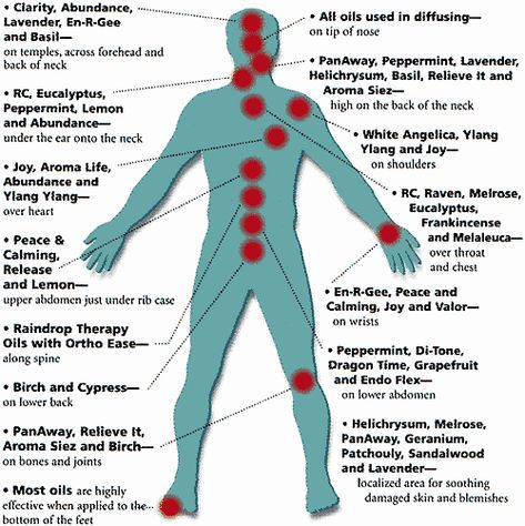 Where on the Body to Apply Essential Oils. Aromatherapy and Pure Essential Oils from SISEL International > sizzlenow.mysisel...