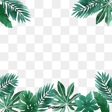 Hand Painted Watercolor Fresh Tropical Plant Border Plant Clipart Element Summer Png Transparent Clipart Image And Psd File For Free Download Tropical Frames Watercolor Plants Plant Background