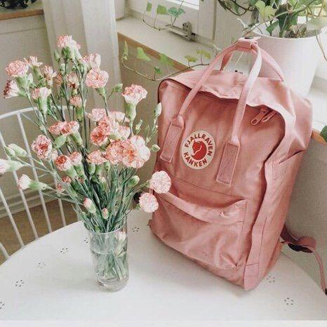 Blush Pink Kanken Backpack By Fjallraven Blush Pink Carnations Bouquet Pink Kanken Kanken Fjallraven Kanken