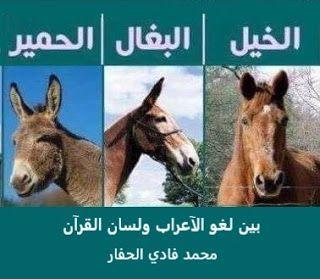 مواضيع قرآنية منوعة الخيل والبغال والحمير بين لغو الآعراب ولسان القرآ Horses Animals Blog Posts