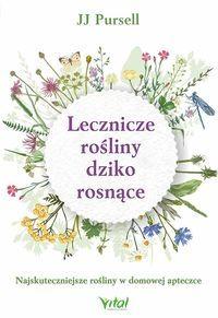 Kwiaty Polskie W Kaliszu Zarezerwuje Leki