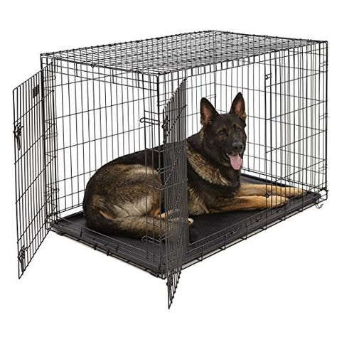 Amazon Com Xl Dog Crate Midwest Icrate Double Door Folding
