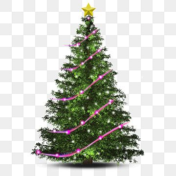 Christmas Tree With Pink Ribbons And Lights Christmas Christmas Tree December Png Transparent Clipart Image And Psd File For Free Download Christmas Tree Clipart Christmas Tree With Gifts Christmas Tree Background