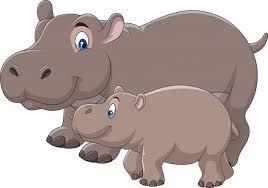 Hipopotamo Dibujo Ricerca Google Animales Dibujos Animados