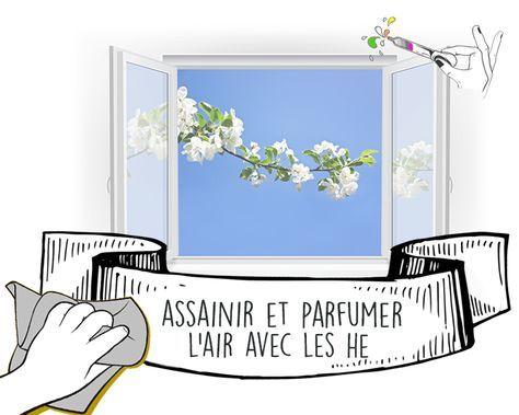 Pour Assainir Et Parfumer L Air De Votre Interieur Naturellement
