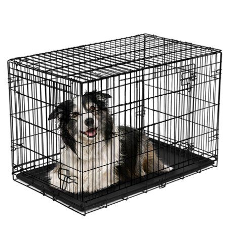 Pets In 2020 Folding Dog Crate Dog Crate Crates