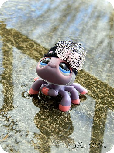 littlest pet shop spider