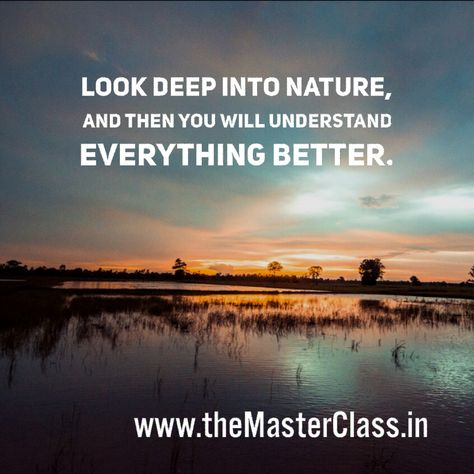 "coach ""Look deep into nature. Then..."