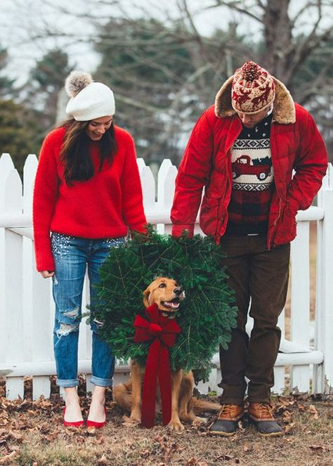 Gifts for the One with Holiday Cheer Gifts for the One with Holiday Cheer Dog Christmas Pictures, Christmas Couple, Christmas Tree Farm, Christmas Photo Cards, Winter Christmas, Merry Christmas, Christmas Card Photo Ideas With Dog, Christmas Photoshoot Ideas, Christmas Photography Couples