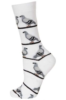 Womens Socks One Size Pigeons