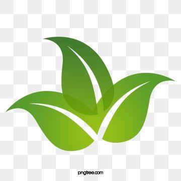 Watercolor Leaves Kartu Bunga Ilustrasi Ikon Hijau