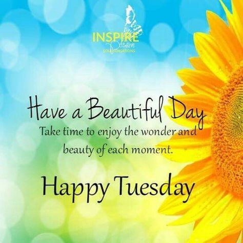Have A Beautiful Day Happy Tuesday good morning tuesday tuesday quotes good…